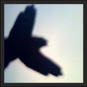 Shadow puppet of bird.
