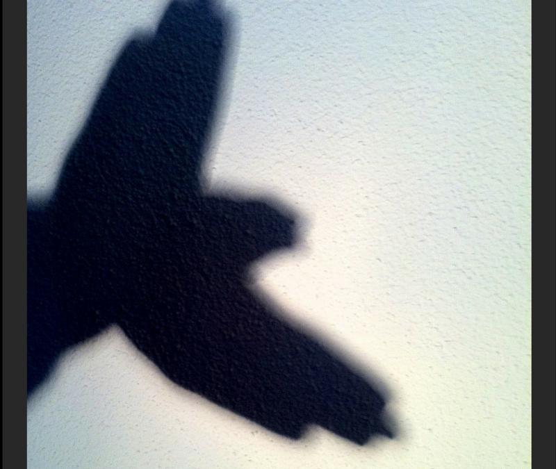 Snapshot: Shadow puppets and funny faces